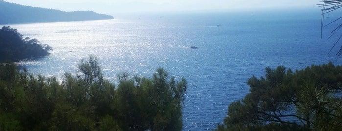 Küçük Boncuklu Koyu is one of Cennet ve İlçeleri.