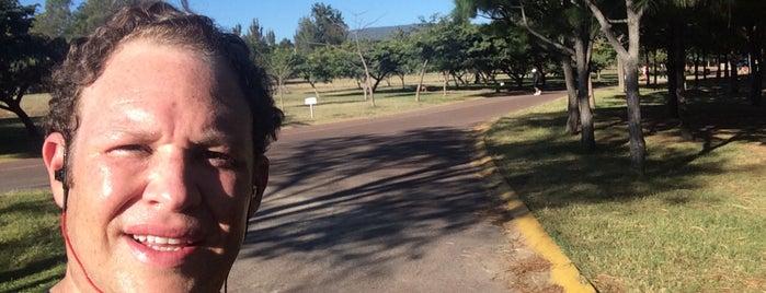 Parque Metropolitano is one of Posti che sono piaciuti a Guillermo.