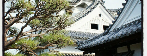 Kochi castle is one of 西郷どんゆかりのスポット.