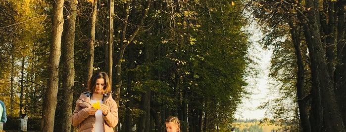 Памятник Василию Дмитриевичу is one of Plës это любовь.