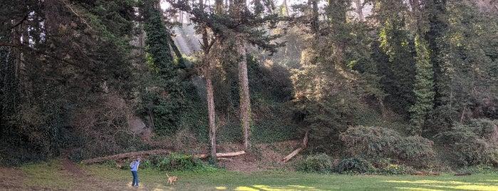 Douglass Playground is one of California.