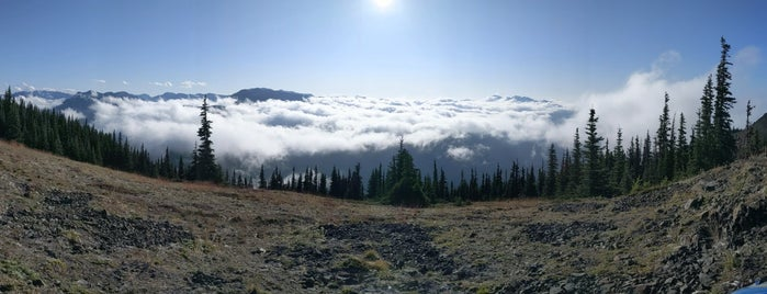 Top Of The Clouds is one of Olympic National Park.