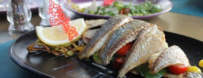 FISH HOUSE Oyster Bar & Restaurant is one of Рестораны☺️.