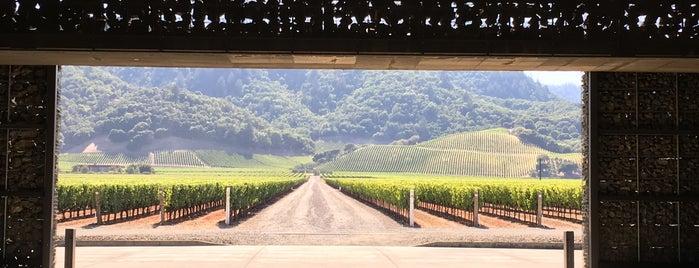 Dominus Vineyard is one of Wineries & Vineyards.