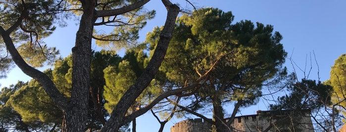 Castello di Gorizia is one of Castelli da visitare.