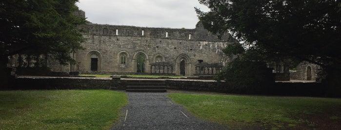 Cong Abbey is one of Orte, die Drinker gefallen.