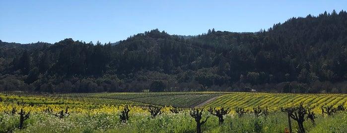 Mounts Family Winery is one of JJ : понравившиеся места.