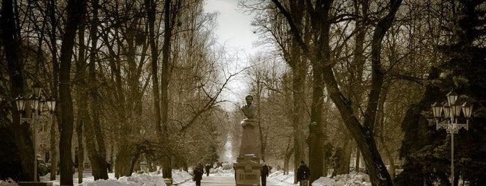 Пам'ятник О. С. Пушкіну is one of Elenaさんのお気に入りスポット.