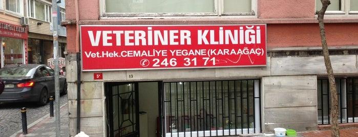 Peteriner Veteriner Kliniği is one of Tempat yang Disimpan Abdullah.