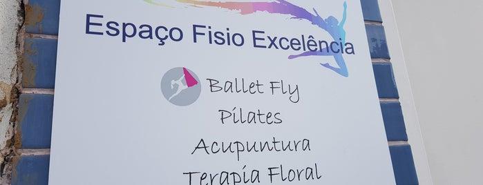 Espaço Fisio Excelência is one of Vinicius 님이 좋아한 장소.
