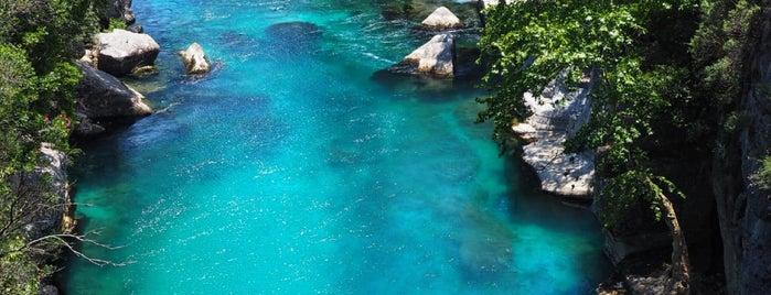Oleandro rakı & balık is one of South Shore Of Turkey.
