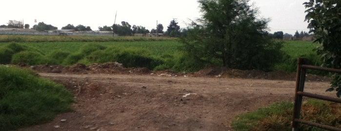 Rancho San Isidro is one of Posti che sono piaciuti a Jorge.