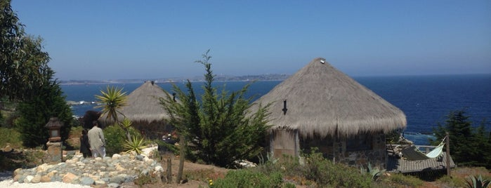 Club El Tebo Mar is one of Playa lais.