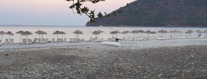 Felix Bungalow Otel & Restaurant is one of Orte, die Tarık gefallen.