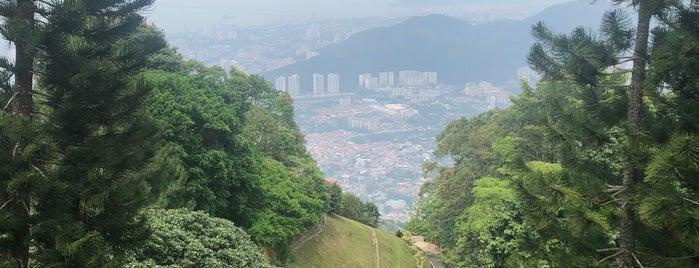 The Habitat Penang Hill is one of MAC 님이 좋아한 장소.