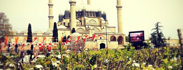 Selimiye Camii is one of Check-in 4.