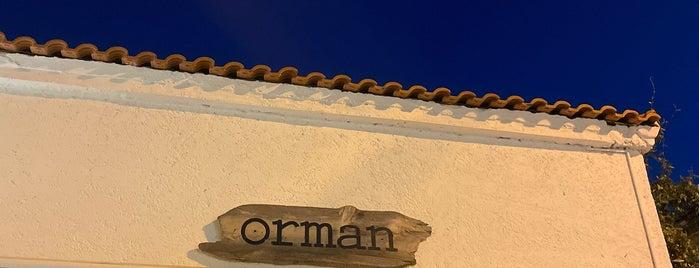 Orman Coffee & Cocktail is one of Yurdun 4-1 köşesi.