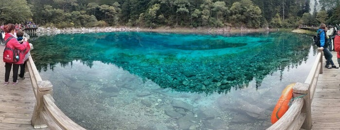 Jiuzhaigou National Park is one of China Trip 2015.