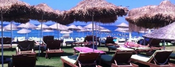 Mambo Beach Club is one of Locais curtidos por Bengisu.