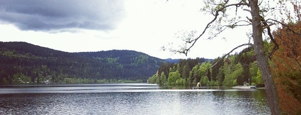 Titisee is one of Jensさんのお気に入りスポット.