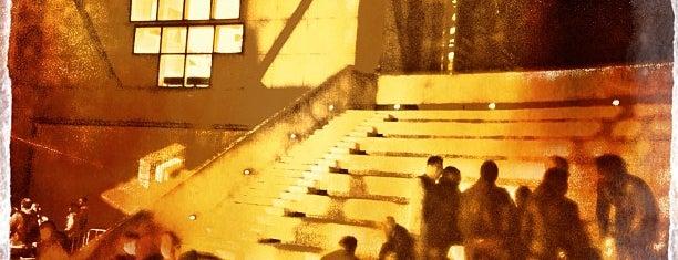 Anfiteatro Pecci is one of 101 posti da vedere a Firenze prima di morire.