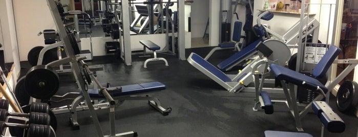 Z Rock Fitness is one of Posti che sono piaciuti a Sveta🍭.