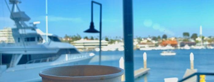 Blue Bottle Coffee is one of Favorite Coffee Shops.