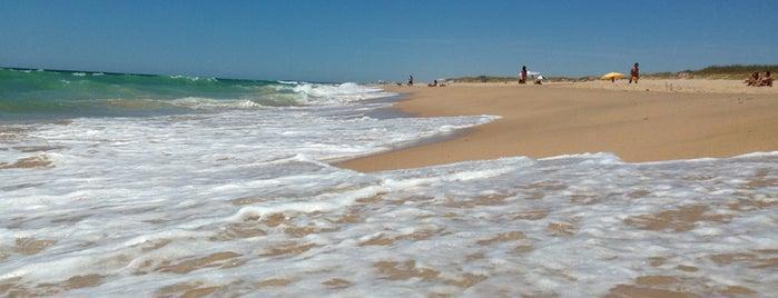 Playa Mangueta is one of veraneo en el caribe andaluz.