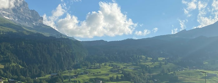 Grindelwald is one of I N T E R L K E N.