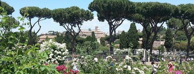 Roseto Comunale is one of 101 cose da fare a Roma almeno 1 volta nella vita.