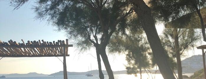 Scorpios Mykonos is one of Orte, die Nora gefallen.