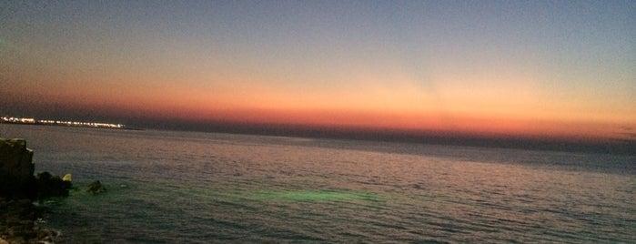 Persian Gulf Beach | ساحل خلیج فارس is one of สถานที่ที่ Hamilton ถูกใจ.