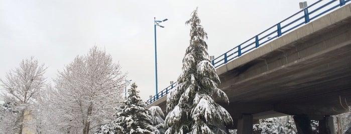 Ghadir Bridge | پل غدیر is one of Lieux qui ont plu à Nora.
