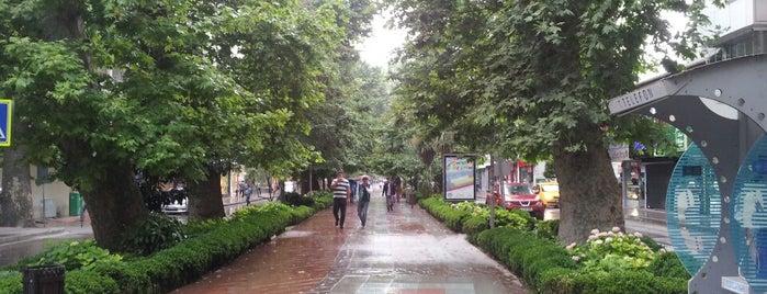 Yürüyüş Yolu is one of Lugares favoritos de Canan.