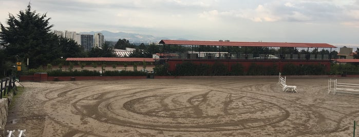 Club Hípico Santa Fé is one of Orte, die Alfonso gefallen.