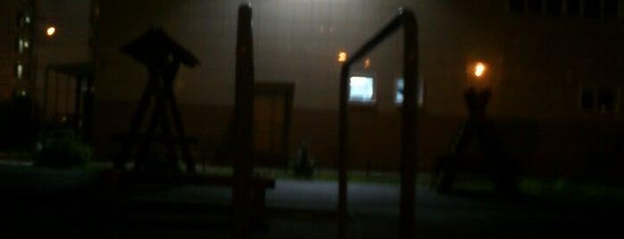 Брусья, фонтан силы is one of Tempat yang Disukai Denis.