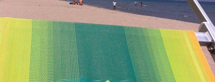Bagno Coco Loco is one of Riviera Adriatica.