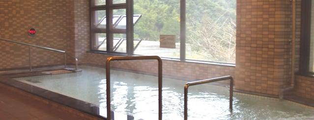カメリア温泉 is one of プチ旅行に使える!四国の温泉・銭湯 ~車中泊・ライダー~.