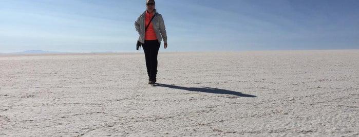 Desierto de Atacama is one of Chile.