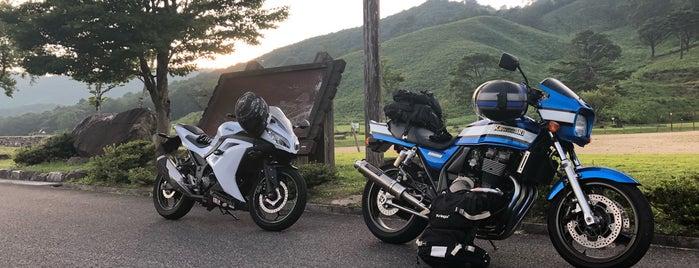 深入山 is one of Orte, die ZN gefallen.
