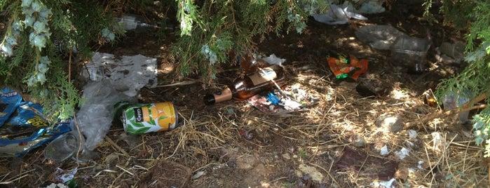 Fatih: сохраненные места