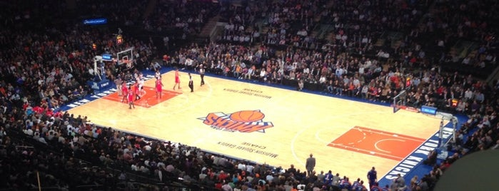 Madison Square Garden is one of major estilo.