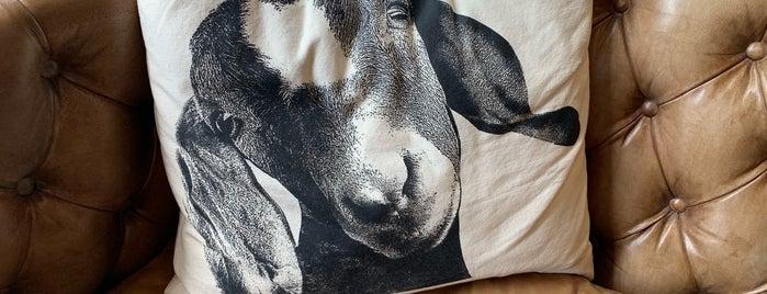 The Goat is one of David 님이 좋아한 장소.