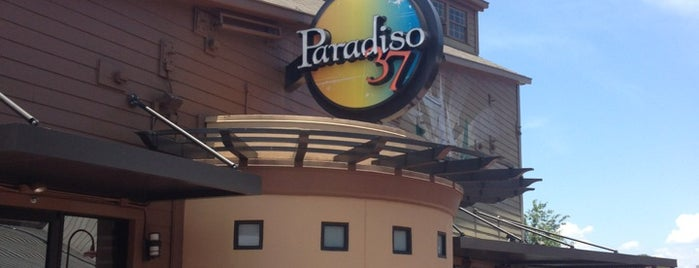 Paradiso 37, Taste of the Americas is one of Disney Dining.