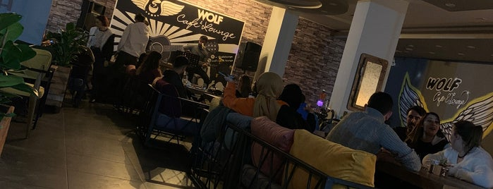 Wolf Cafe & Lounge is one of Tarıkさんの保存済みスポット.