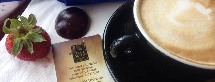 Cool Coffee & Tea Shopd
