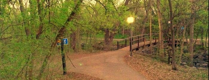 Minnehaha Parkway West is one of Tempat yang Disukai Lisa.