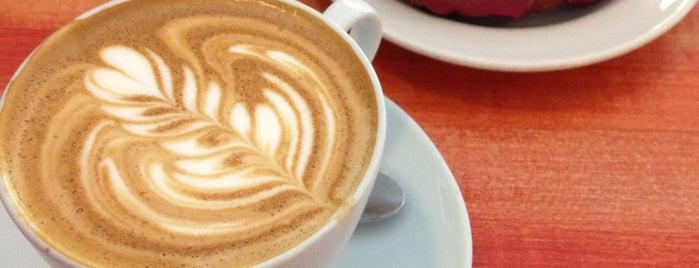 Absolute Coffee is one of New Neighborhood.
