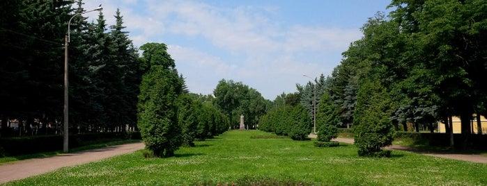 Сад «Василеостровец» is one of Tempat yang Disukai Frank.