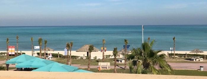 Najmah Beach is one of Lugares favoritos de Firas.